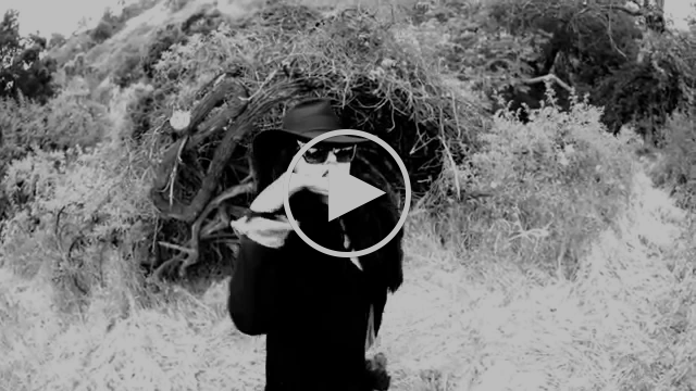 Tairrie B - Beware The Crone (OFFICIAL VIDEO)
