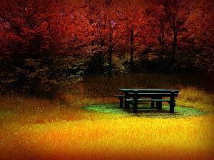 1611881907 300x225 La meditación es sencilla