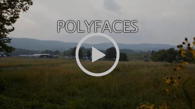 Polyfaces Trailer