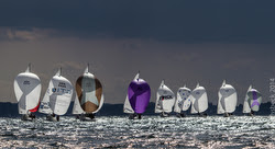 J/24s sailing on sunlit seas under spinnaker