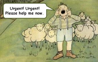 Urgent Sheep
