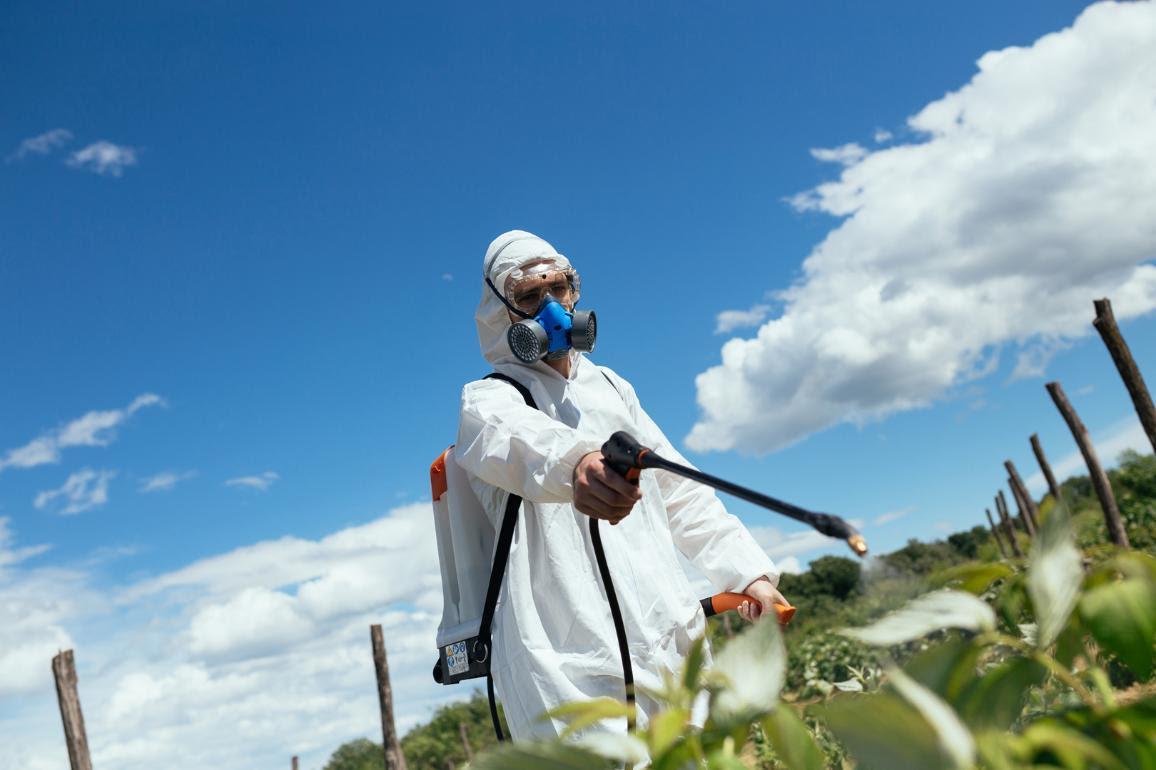Il Parlamento chiede che i pesticidi siano controllati