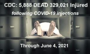 CDC/VAERS Stats Through June 4th, 2021 Morgue-6.4.21-768x461-1-300x180