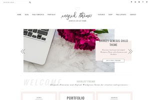 Portfolio eCommerce Genesis theme In