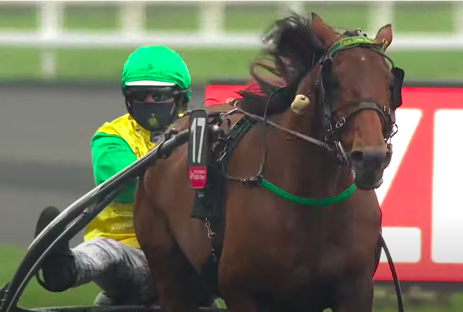 Björn Goop (SWE) andFace Time Bourbon (FRA). Photo: Le Trot TV