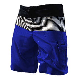 Boarder Edition Boardshorts