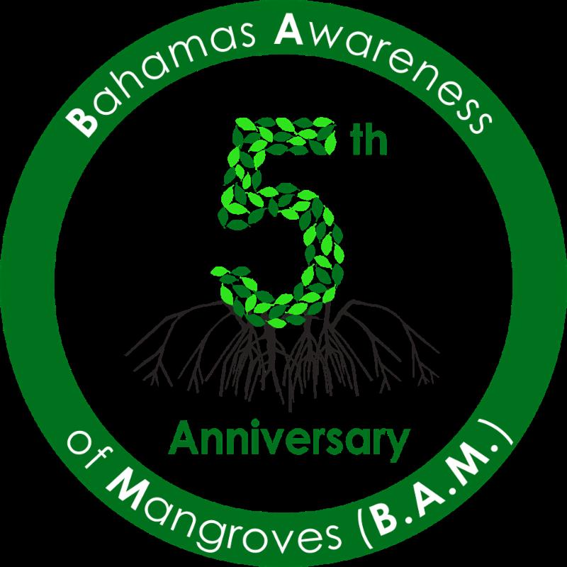 BAM 5 Year Anniversary Logo