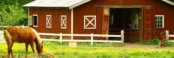 Barn on a small farm