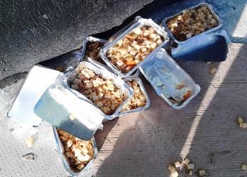 Μαρτυρία - ΣΟΚ: Οι λαθρομετανάστες πετάνε στα σκουπίδια τα δωρεάν γεύματα του Τσίπρα ενώ οι έλληνες πεινάνε [photos] - Φωτογραφία 2