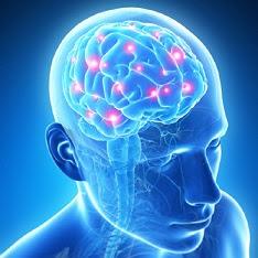 あなたの脳は毒素のゴミ捨て場ですか?