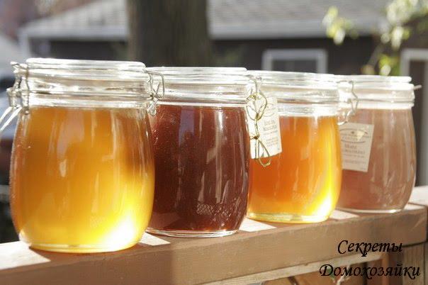 Какой мед и при каких заболеваниях помогает...