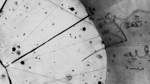 Theorists discover the 'Rosetta Stone' for neutrino physics