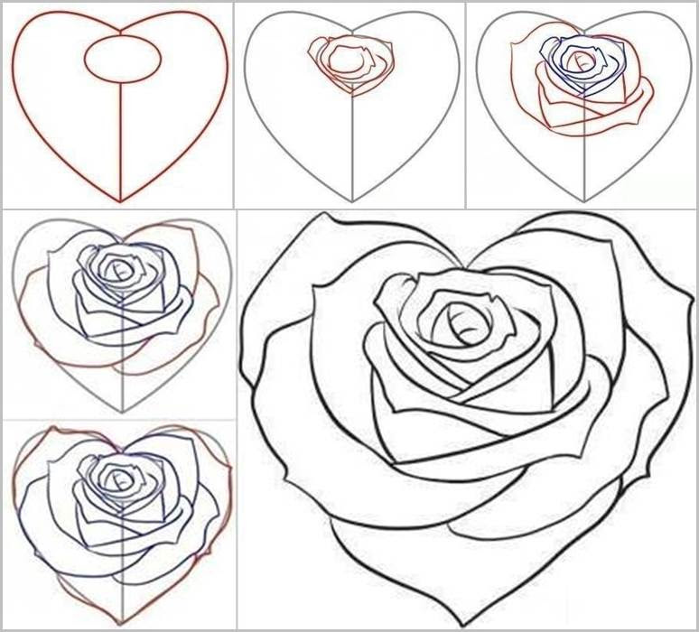how to draw a rose - 774×700
