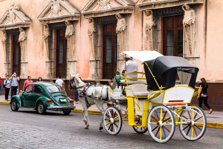 Merida Meksika'da bir şehir caddede yolcularla at arabası.