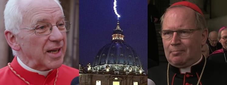 Kościół przechodzi ostatnią próbę przed przyjściem Chrystusa? Prymas Belgii chce ''ceremonii'' dla homoseksualistów