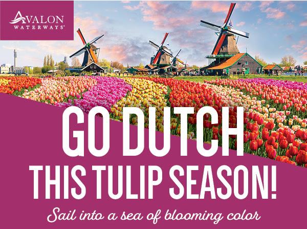 Go Dutch!