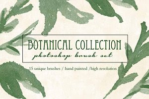 Botanical Brush Collection