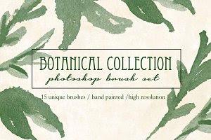 Botanical Brush Collection