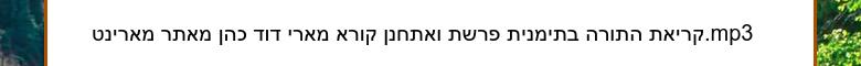 קריאת התורה בתימנית פרשת ואתחנן קורא מארי דוד כהן מאתר מארינט.mp3
