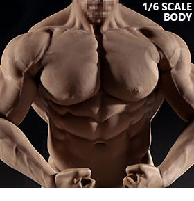 Super-Flexible 1/6 Scale Seamless Male Body (Mr. Big)