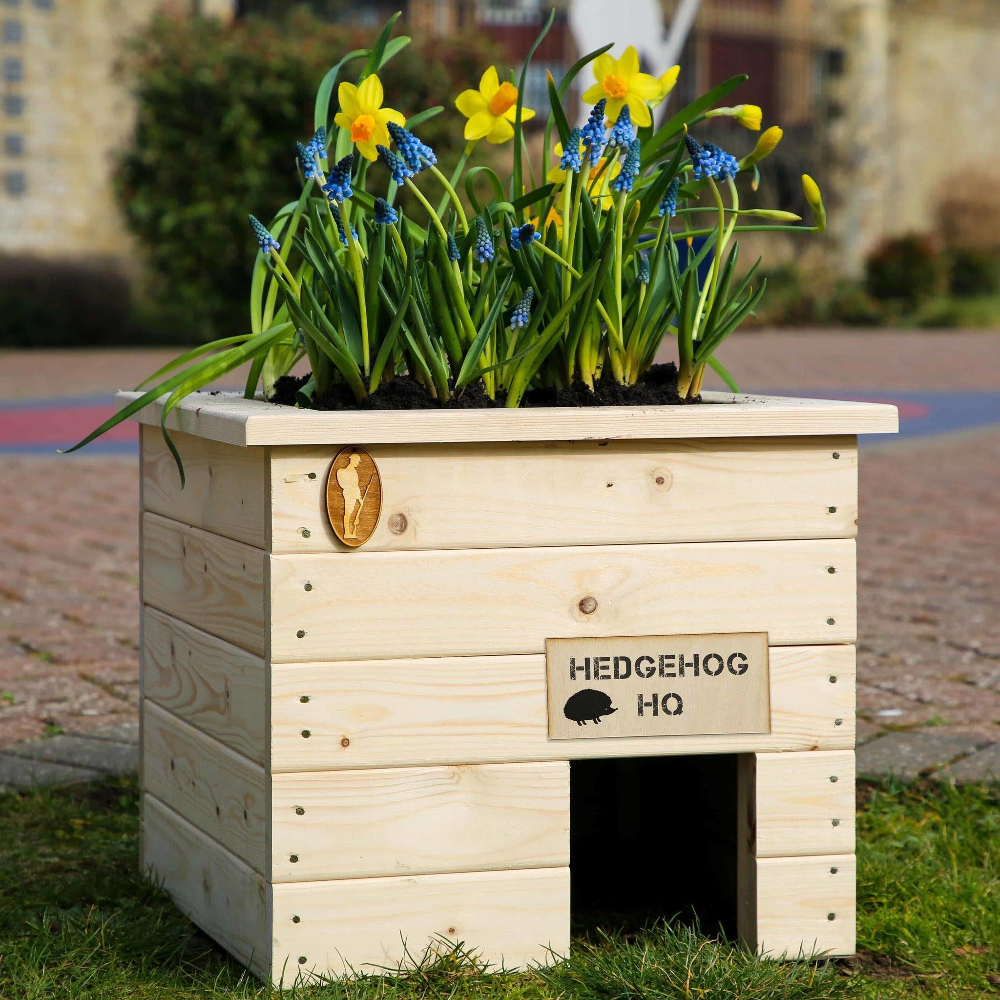 'Hedgehog Headquarters'