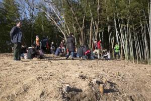 昨年、この場所は奥と同様竹林だった。粉砕された竹が積もって、ふかふか