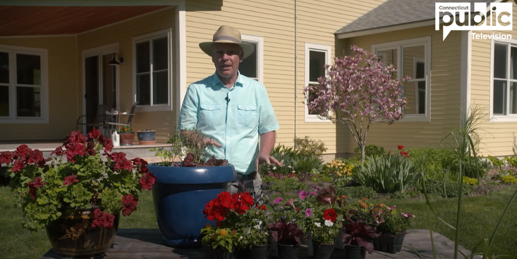 flower container video