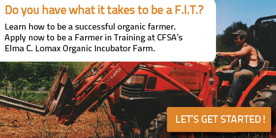 Apply now to be a Farmer in Training at Lomax Incubator Farm