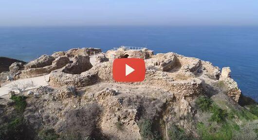 Herzliya-email preview