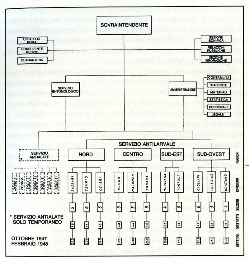Schema dell'organizzazione messa a punto da J. Logan