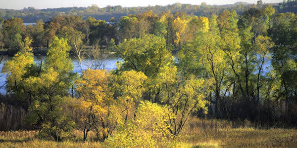 Minnesota River at Lac Qui Parle State Park