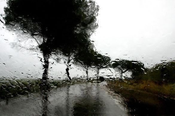 Abbas Kiarostami: ABBAS KIAROSTAMI RAIN (27) 2007