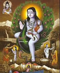 Image result for baba balaknath picture