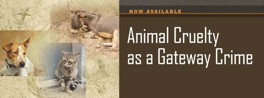 Animal Cruelty as a Gateway Crime