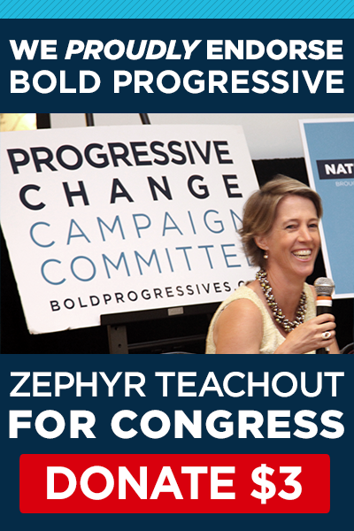 We Proudly Endorses Zephyr Teachout for Congress!