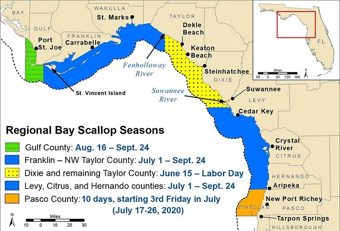 Scallop season 2020 map