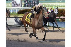Pink Sands wins the Rampart Stakes at Gulfstream Park