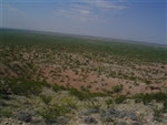 Texas, Reeves County, 20 Acres near Pecos. TERMS $150/Month