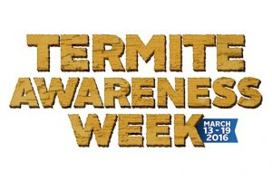 Tucson Termite Control & Inspection