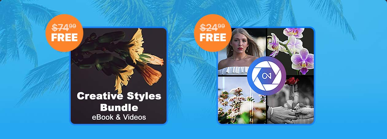 ON1 Mid-Summer Sale, you will get the 50% discount and free gifts: The Creative Styles eBook and Video + ON1 100 Pack of LUTs, Looks, and Styles worth $99.98.