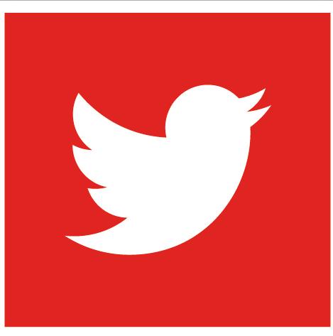 Twitter Flat Red