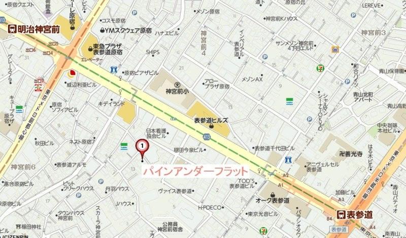 パインアンダー・フラット 地図