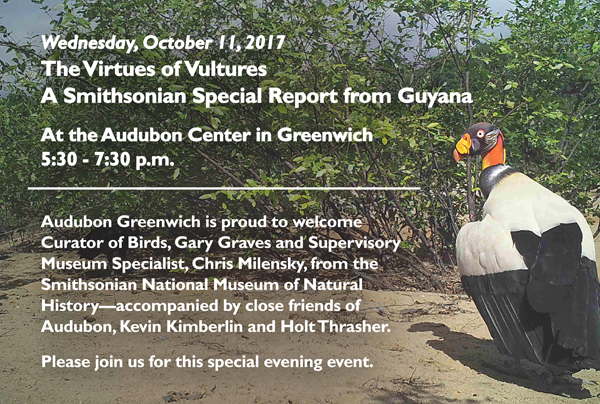 Wednesday, October 11, 2017 The Virtues of Vultures  A Smithsonian Special Report from Guyana At the Audubon Center in Greenwich 5:30 - 7:30 p.m.