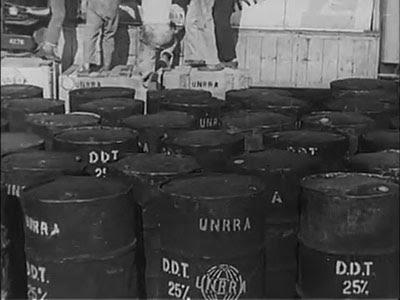 Fusti di DDT