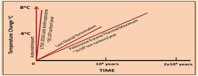 2030900.jpg