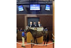 The Tonalist filly consigned as Hip 27 in the ring at the Fasig-Tipton Midlantic Sale