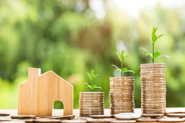 economia-monedas-hogar-marketing-finazas-crisis-Nidia-Roa-1170x780