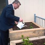 Wethouder Roy Luca geeft planten in moestuinbakken water