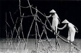Image result for cầu khỉ miền tây