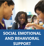 Social and Emotional Support Picture